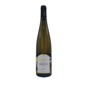 Riesling 75 cl – Domaine Guy Wach